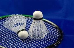 ABGESAGT: Badminton - 1.Ranglisten A-Turnier 2020