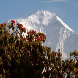 'Bilder der Welt' Himalaya - Vortrag von Bruno Baumann